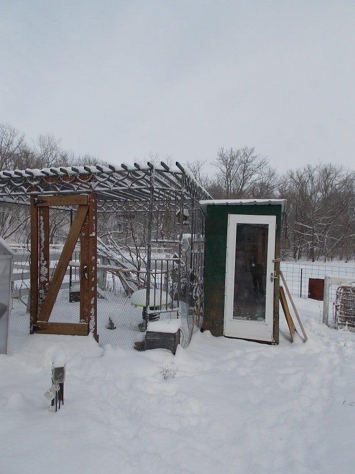 Feb. snow 2013 024
