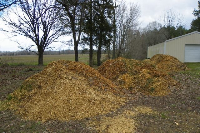 Wood chips and mulch for back to eden gardening