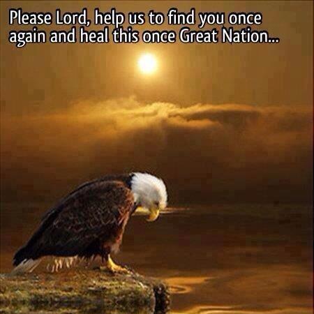 eagle head down