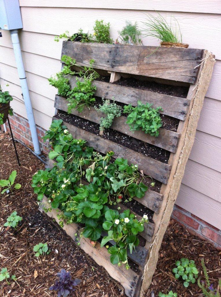 Pallet gardening? - Seasoned Citizen Prepper
