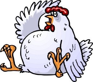 sitting-cartoon-chicken