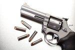 Top 6 Homestead Guns