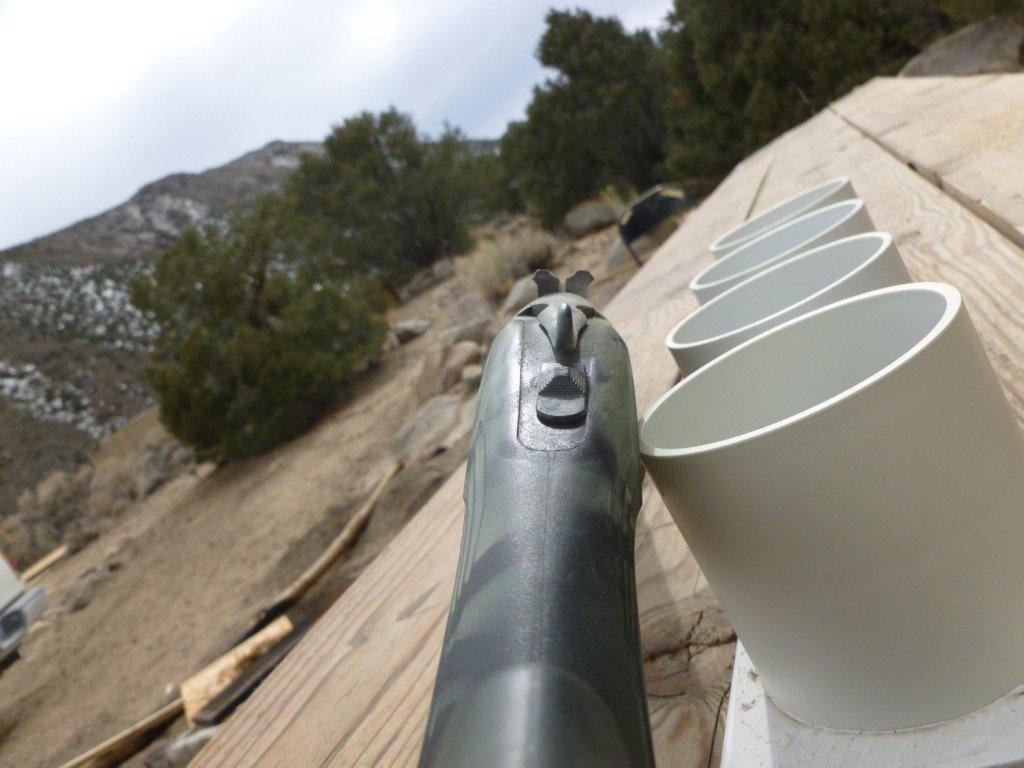 shtf-gun-2