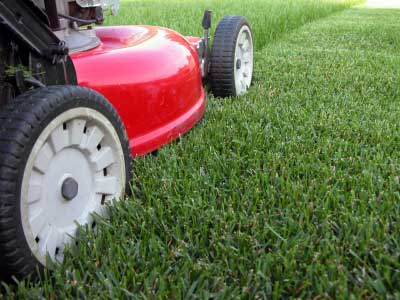 Lawns as Part of Your OpSpec
