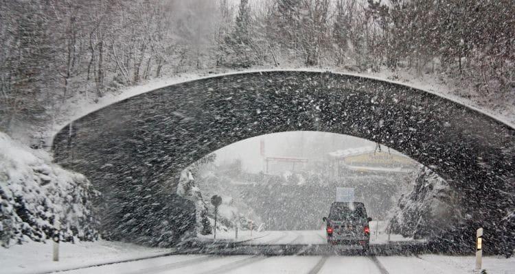 Blizzard Winter Survival