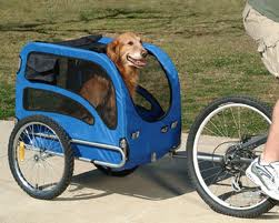 bicycle cart dog