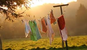 laundry on line