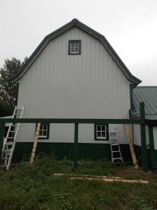 Progress on the new chicken coop.