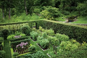permaculture with hedge
