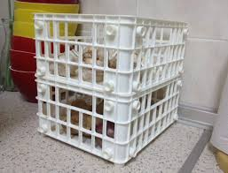 plastic bin 3