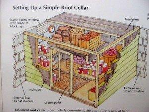 root-cellar diagram