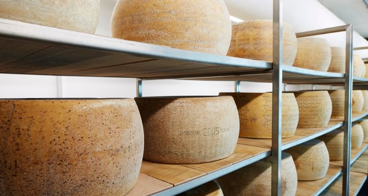 Storing Hard Aged Cheese (1)