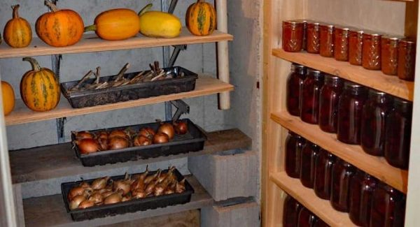 Root Cellar for Food Preservation