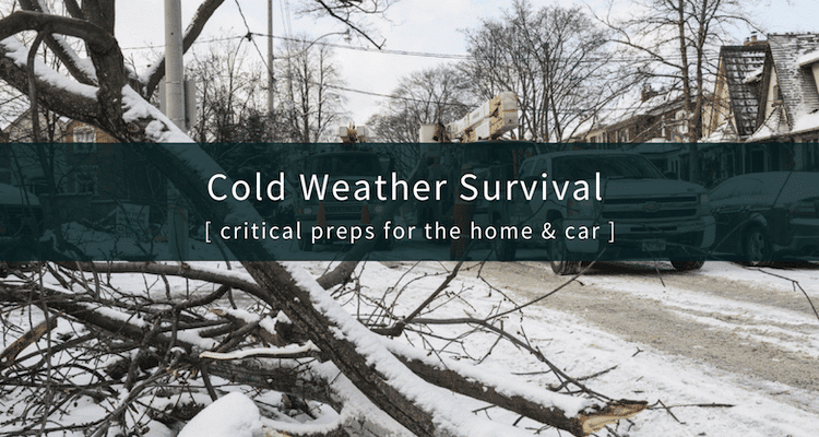 Cold Weather Survival Tips